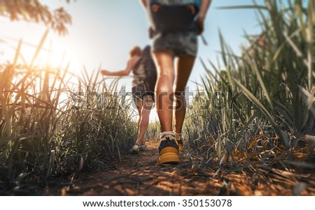 Hikers walking through the meadow with lush grass at sunny hot day