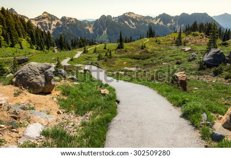 Hiking in the lush meadows in Mount Rainier National Park - stock photo