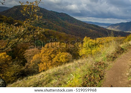 Hiking path in autumn forest