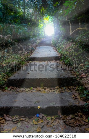 Hiking to the Light - stock photo