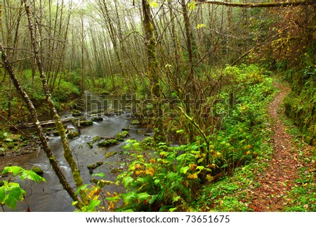 Hiking trail along an Oregon Stream
