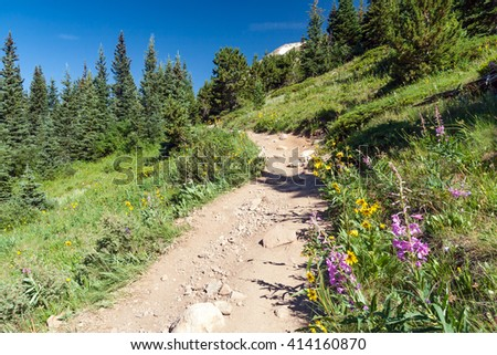 Hiking trail climbs through a field of wildflowers in the Colorado Rocky Mountains - stock photo