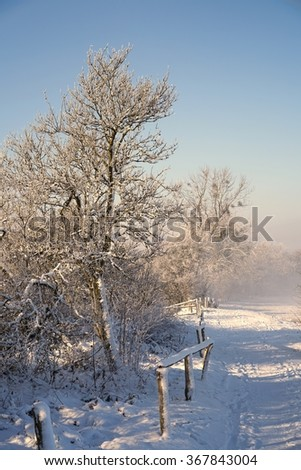 hiking trail in a snowy landscape in the winter  - stock photo