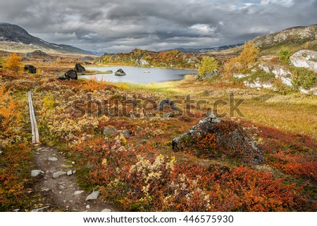 Hiking trail in Sweden in Autumn - stock photo