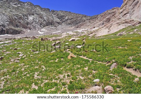 Hiking Trail in the Rocky Mountains - stock photo