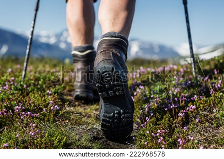Hiking trail with flowers - stock photo