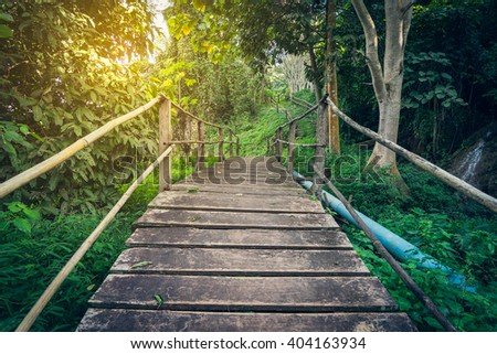 Hiking Tropical Forest Woden Bridge - stock photo