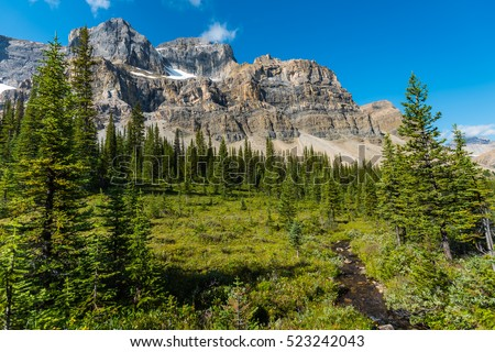 Hiking views of a high alpine meadow from Molar Pass and Mosquito Creek Backcountry areas in Banff National Park Alberta Canada