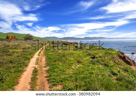 Hiking, walking, running, on a trail next to jagged cliffs, with blue skies, white clouds, green grass & yellow flowers at the Estero Bluffs Sate Park on the California Central Coast near Cambria, CA. - stock photo