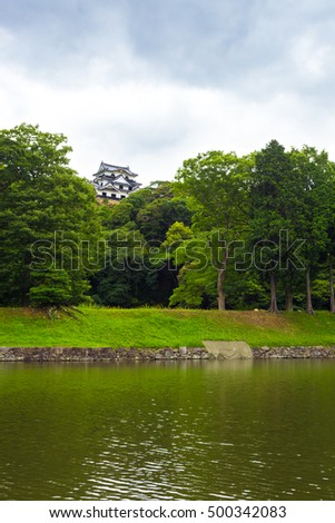 Hikone-jo castle at a distance above the treeline and surrounding moat on an overcast day in Hikone, Japan. Vertical