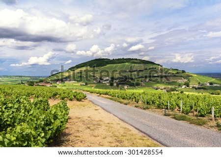 Hill and vineyards of Brouilly village, Beaujolais, France - stock photo