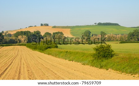 Hill countryside in Tuscany, with ploughed and weath fields