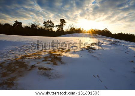 hill in snow at sunset during winter, Netherlands