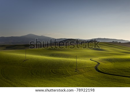 hill in tuscany/val d'orcia - stock photo