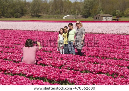 Hillegom, Holland - May 5, 2016: A father takes a picture of his wife and children in a flower field with tulips of many colors in Hillegom, Holland on May 5, 2016