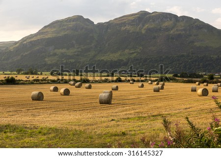 Hills, fields and hay bails.