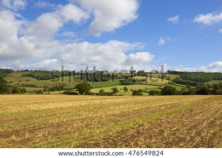 hills hedgerows and woodlands in an agricultural landscape in the yorkshire wolds under a blue cloudy sky in summer