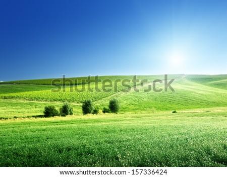 hills in sunny day Tuscany, Italy  - stock photo