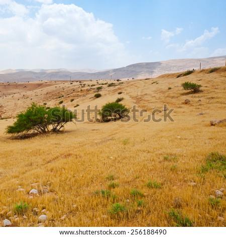 Hills of the Negev Desert in Israel, Instagram Effect - stock photo