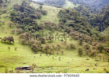 Hillsides  in the Amazonian foothills of the Andes in Ecuador deforested for cattle pasture - stock photo