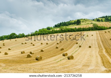 Hilly landscape rural landscape with hay bales - stock photo
