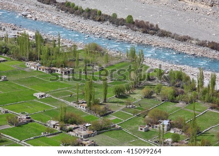 Himalayan oasis â?? gardens with apricot trees and poplars among barley fields in Turtuk village, Ladakh, Jammu & Kashmir, India