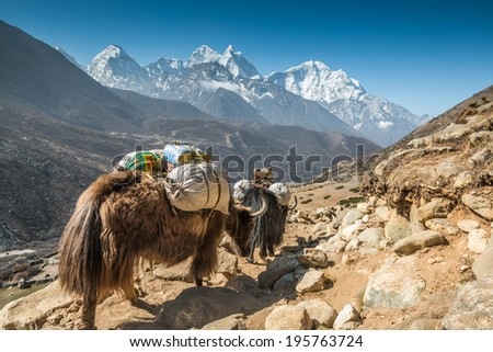 Himalayas, Nepal - stock photo