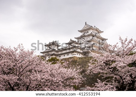 Himeji castle and cherry blossom in Himeji, Japan.