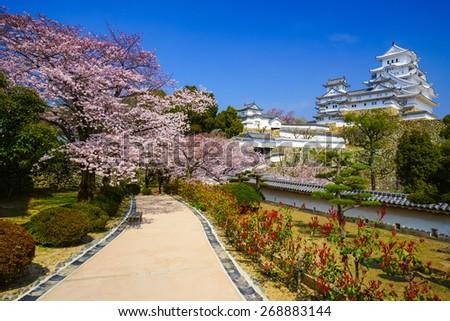 Himeji Castle in spring  cherry blossom season, Hyogo, Japan - stock photo