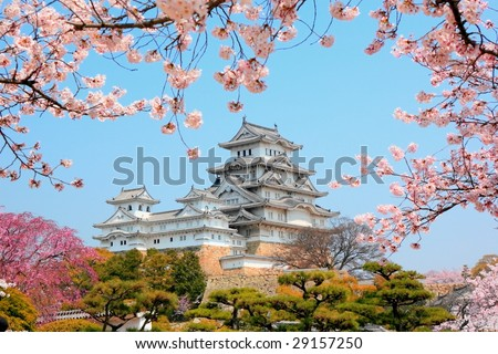himeji castle surrounded by cherry blossom - stock photo