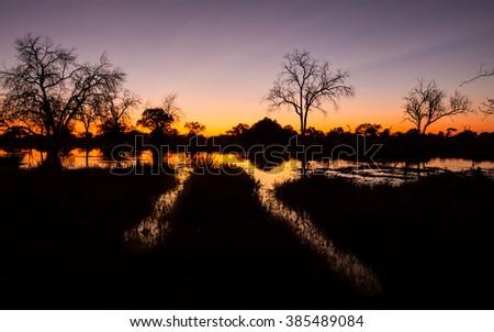 Hippo highways at dusk in Khwai River in Botswana - stock photo