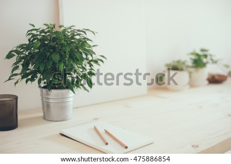 Hipster artist's work space, plants and canvas