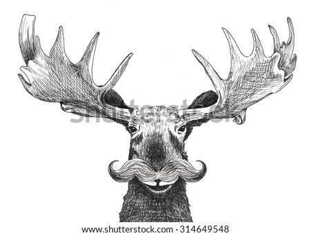 hipster moose with handlebar mustache, hand drawn funny moose character with facial hair and large antlers isolated on white background. Cute hipster animal cartoon creature. - stock photo