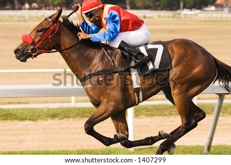 His jockey crouched down over his neck, a thoroughbred racer takes the corner at breakneck speed towards the finish line. - stock photo
