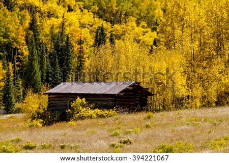 Historic abandoned building of Colorado ghost town near Aspen CO, surrounded by fall color of the changing yellow Aspen trees