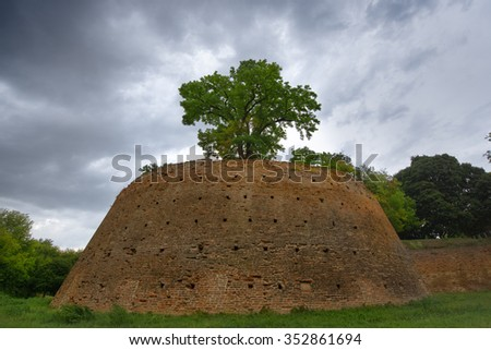 Historic medieval city of Ferrara in Italy wall, a tree on the wall, green grass, cloudy sky - stock photo