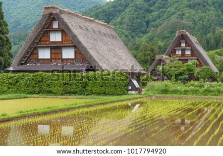 Historic Village of Shirakawa-go in Japan in Springtime
