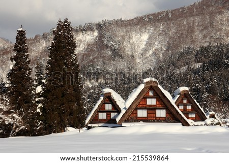 Historic Villages of Shirakawa-go and Gokayama, view of the thatched cottage, Japan - stock photo
