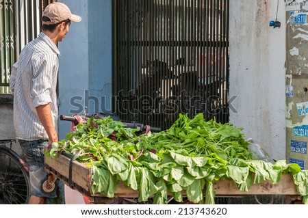 HO CHI MINH CITY, VIETNAM - AUG 23: Unidentified street vendor selling vegetables in Ho Chi Minh City, Vietnam on Aug 23, 2014. - stock photo