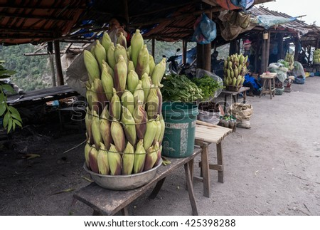 HOA BINH, Vietnam, March 12, 2016 people, highland Hoa Binh, Vietnam, selling boiled corn, guests, Vietnam