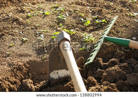 Hoeing and tilling the land - stock photo