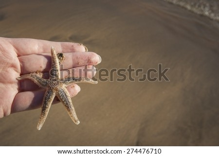 Hold holding a Starfish on a beach - stock photo