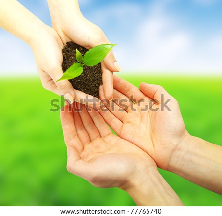 holding a plant - stock photo