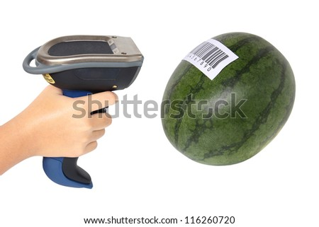 Holding and Scanning label on watermelon with bluetooth barcode scanner - stock photo