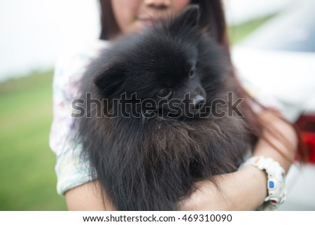 Holding Black dog