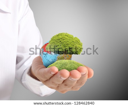 holding green tree in a hand