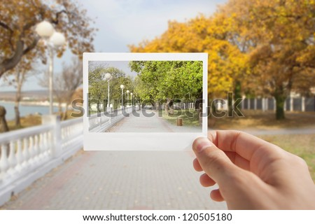 Holding Instant photo on a autumn background. - stock photo