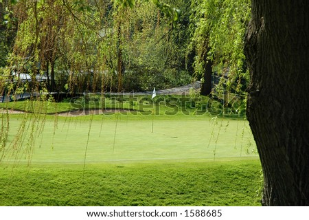 Hole on green golf course with willow tree