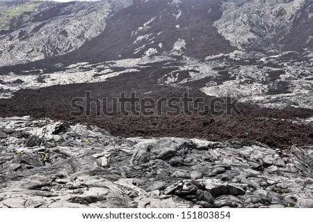 Holei Pali, Hawaii Volcanoes National Park (USA) - stock photo