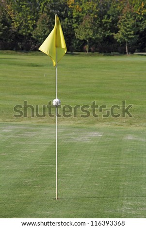 Holes of golf on the green grass, marked a yellow flag